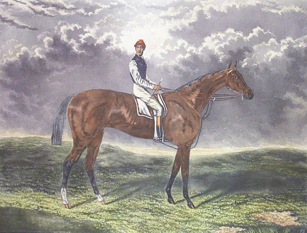 'Dutch Oven' Lord Falmouth racehorse